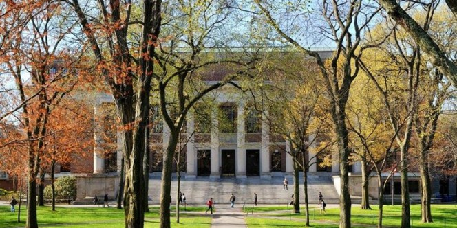 Harvard-Widener-Library